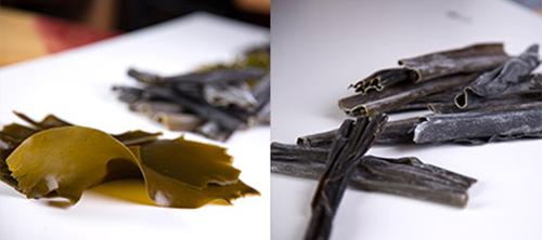 Dried kelp thallus 90-30 cm